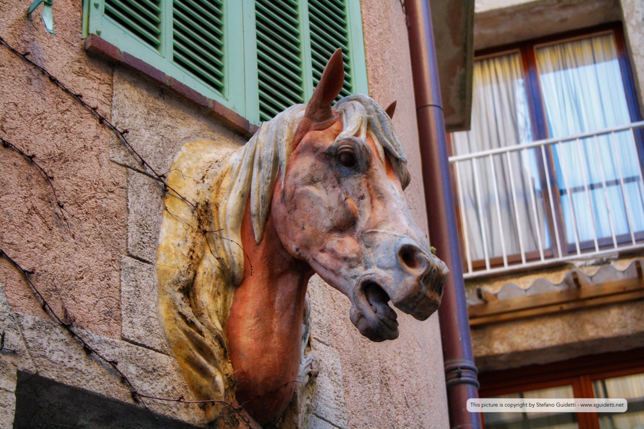 cannes - mougins - antibes_20150105_IMG_0574