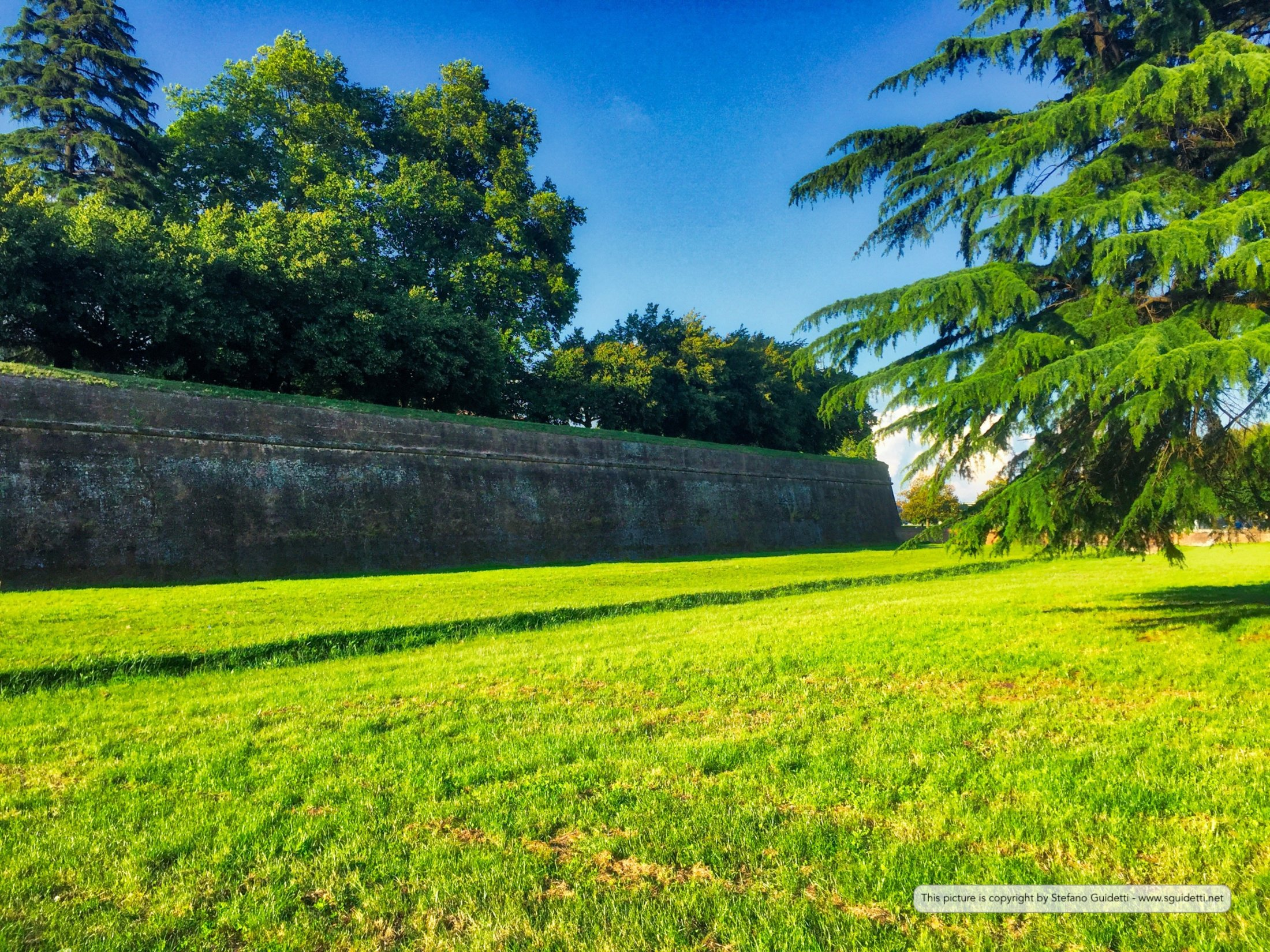 lucca_20160605_IMG_0615