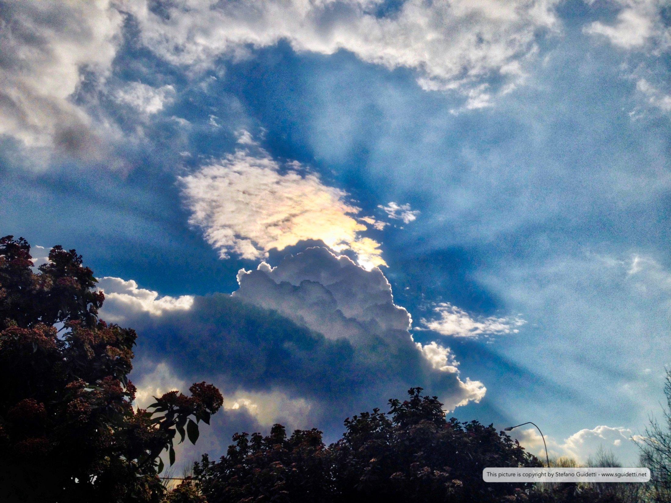 nature_20140222_IMG_1033