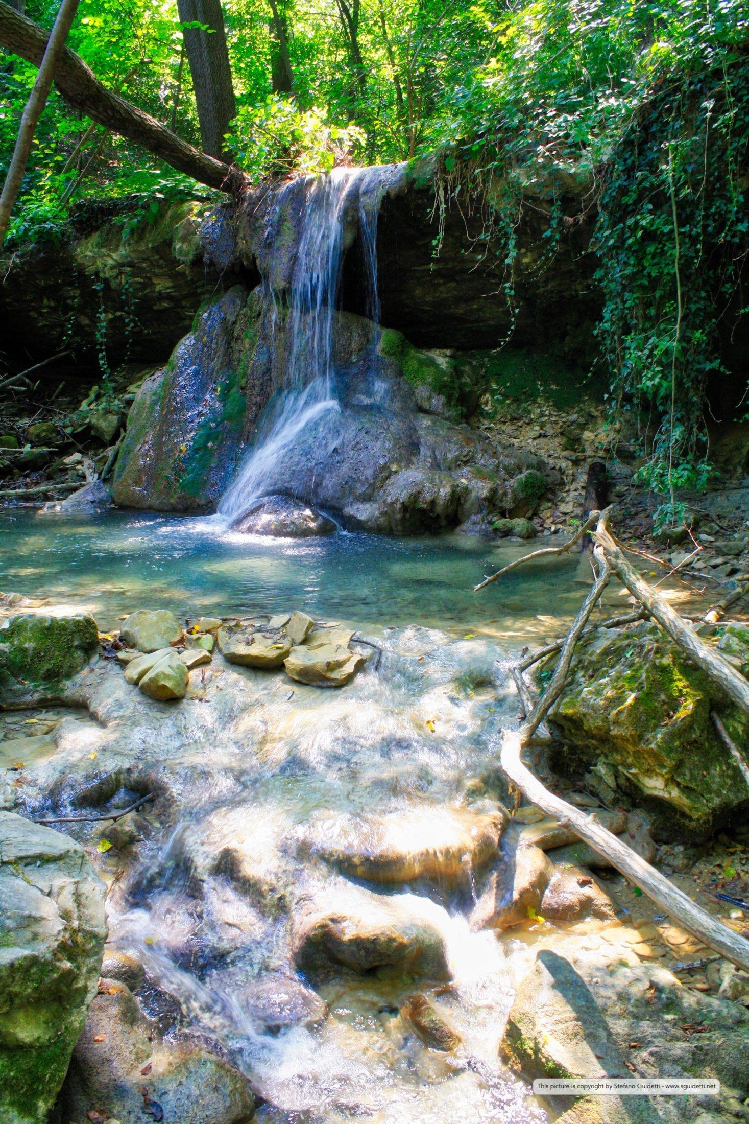 nature_20150807_IMG_0053