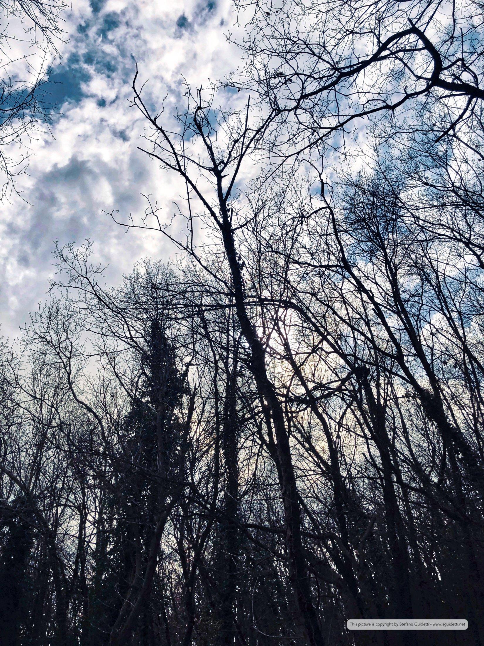 nature_20180402_IMG_0335