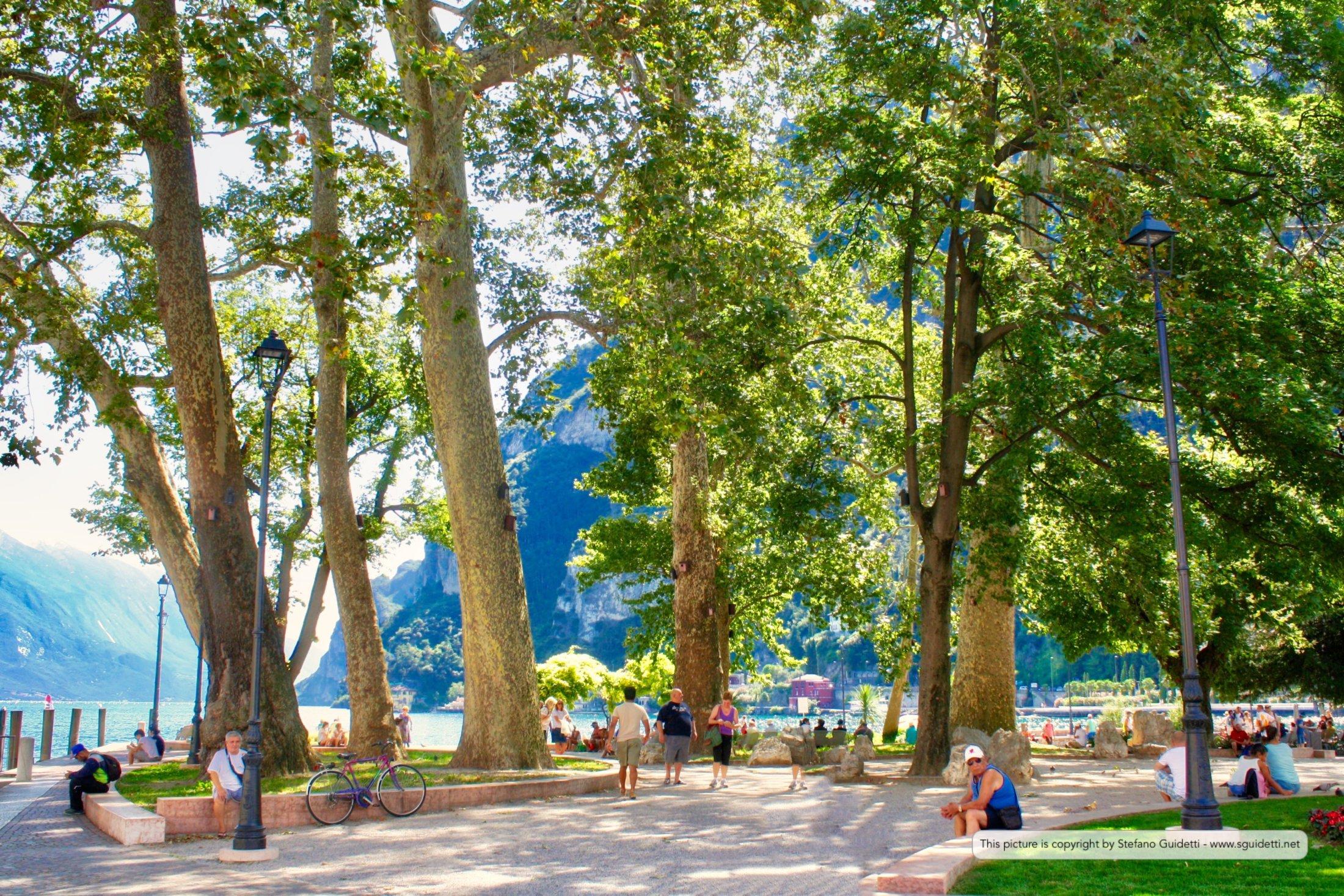 Parco del Brolio